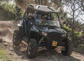 Buggies 4x4 - 21238 promotions