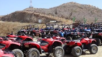 Buggies 4x4 - 87956 selection